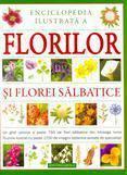 Aquila `93 Enciclopedia ilustrata a florilor si florei salbatice