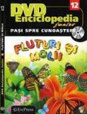 Erc Press DVD Enciclopedia Junior nr. 12. Pasi spre cunoastere – Fluturi si molii (carte + DVD)