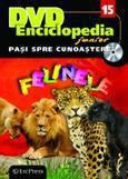 Erc Press DVD Enciclopedia Junior nr. 15. Pasi spre cunoastere – Felinele (carte + DVD)