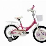 DHS DHS – Bicicleta 1602 16 inch