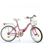 Dino Bikes Bicicleta 204R Seria Winx