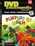 Erc Press DVD Enciclopedia Junior nr. 12. Pasi spre cunoastere – Fluturi si molii (carte + DVD)