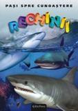 Erc Press DVD Enciclopedia Junior nr. 14. Pasi spre cunoastere – Rechinii (carte + DVD)